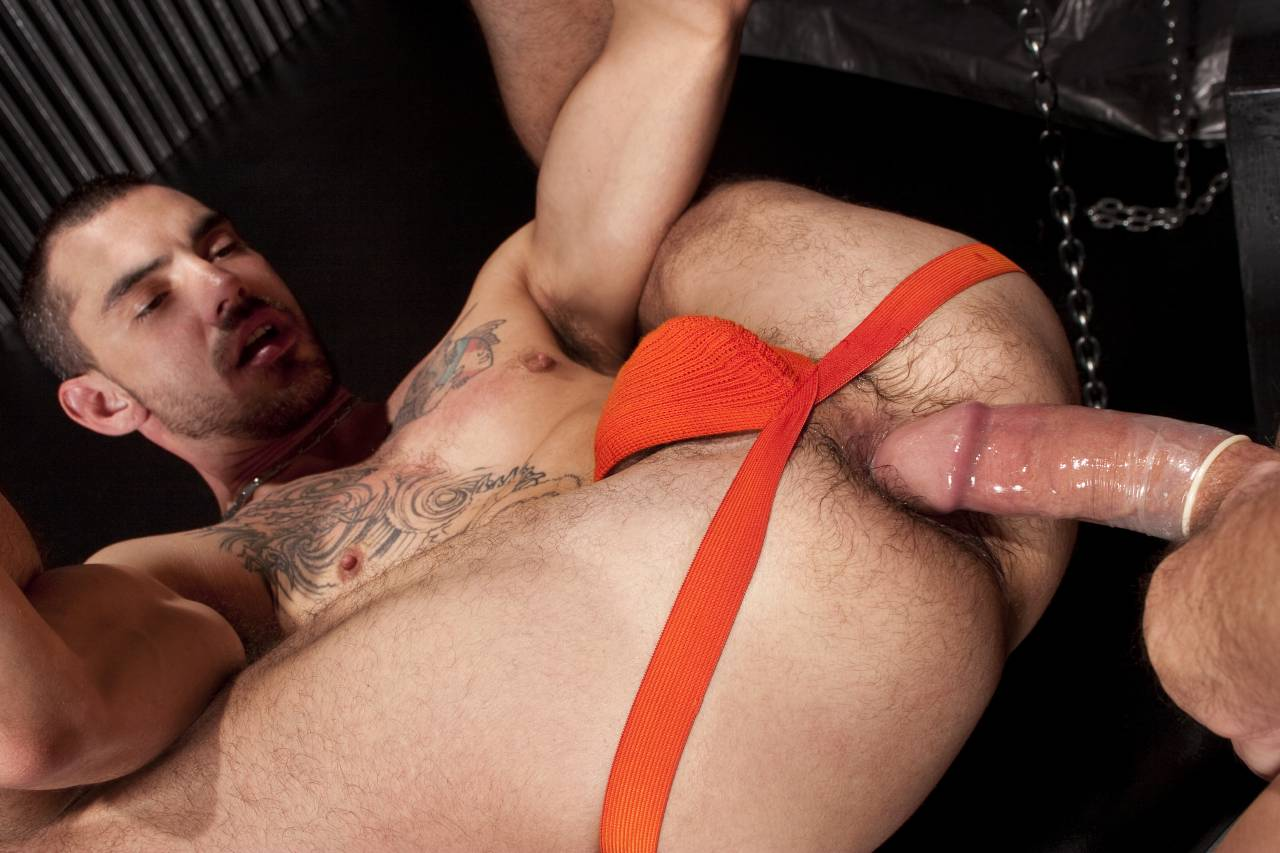 pounded gay shop